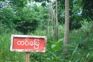 gantaw-land-files-2